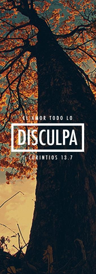 el amor Todo lo disculpa. 1 Corintios 13.7