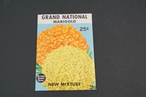 Seed Package, Burpee Seeds, W. Atlee Burpee Co., Grand National Marigold, Vintage 1950's  Vintage Garden, Horticulture Greenhouse, Free Ship