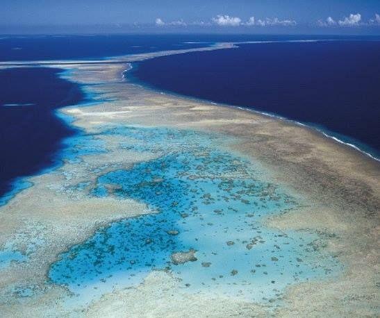 Solomon Islands Beach: 28 Best Solomon Islands Beach Images On Pinterest