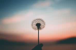 Jesus Had You in View Too | by Kelsey Hency