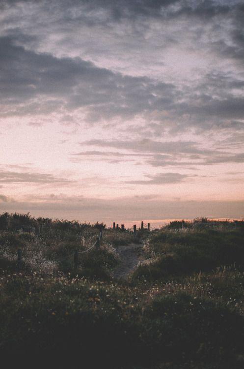 Fields, flowers, evening, sky, clouds, summer feeling, freedom, nature, beautiful.