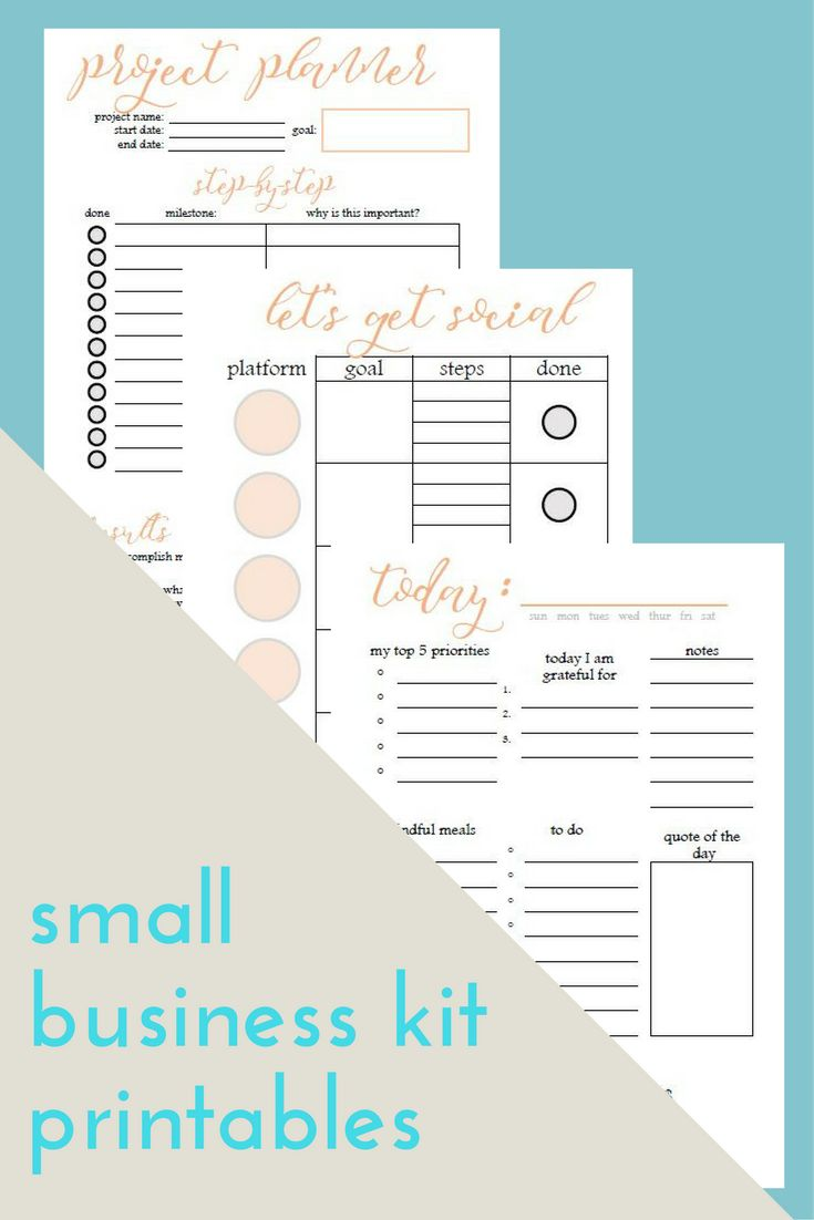 Social Media Organizer Small Business Scheduler Mompreneur Planner Planner for WAHM Project Planner for Entrepreneurs