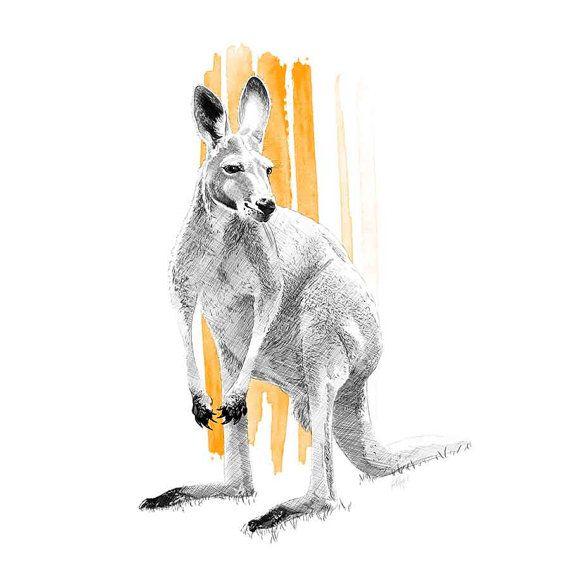 Skippy the Kangaroo illustration, Fine Art Print, Drawing, Sketch, Australia. By Incandescent Design www.incandescent.design