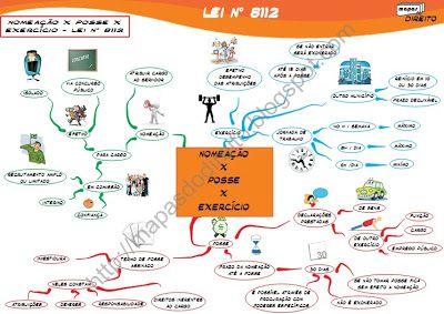 Mapa Mental - Lei 8112/90 - A grande artista por trás desses mapas mentais é a Prof. Valéria Dell'Isola, primeira professora de Direito