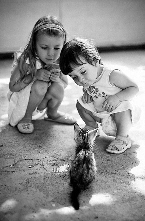 Animals often amaze kids.