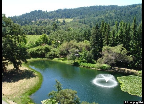 Sterling Vineyards | Calistoga, CA