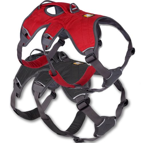 Ruffwear Web Master Padded Dog Harness With Built-In Handle & 5 Point Adjustment