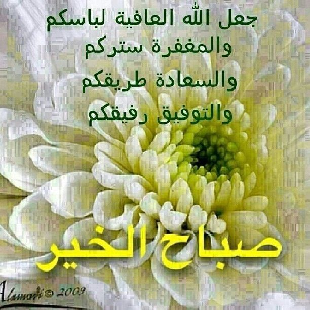 Good Morning Everyone In Arabic : Good morning quotes in arabic quotesgram