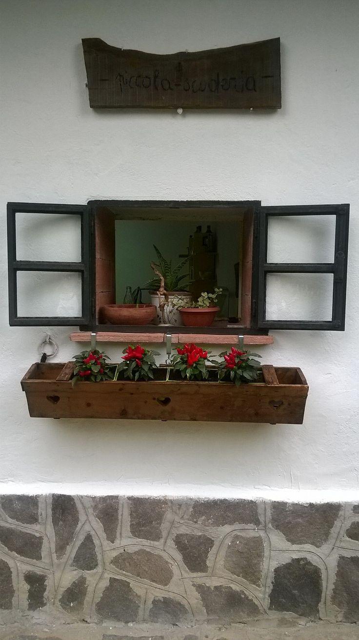 finestra con peperoncini