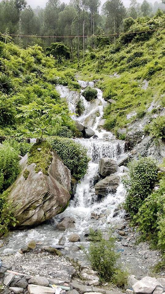 A waterfall @ Dhanolti - Dehradun Region Uttarkhand