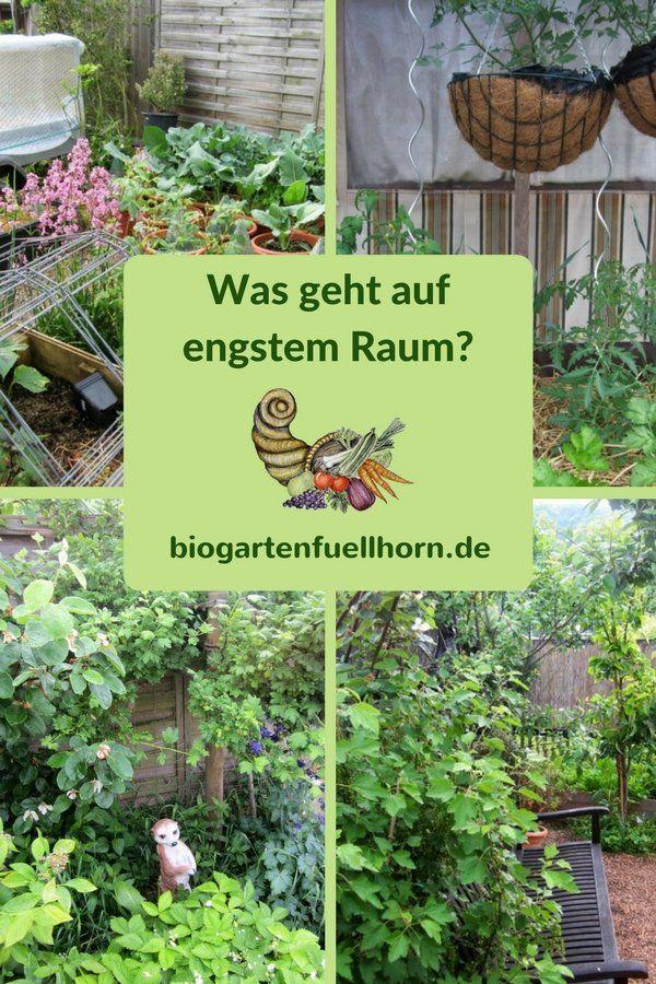 Was geht auf engstem Raum? Anbau auf kleinem Platz #terassengarten #gemüse terasse #selbstversorger