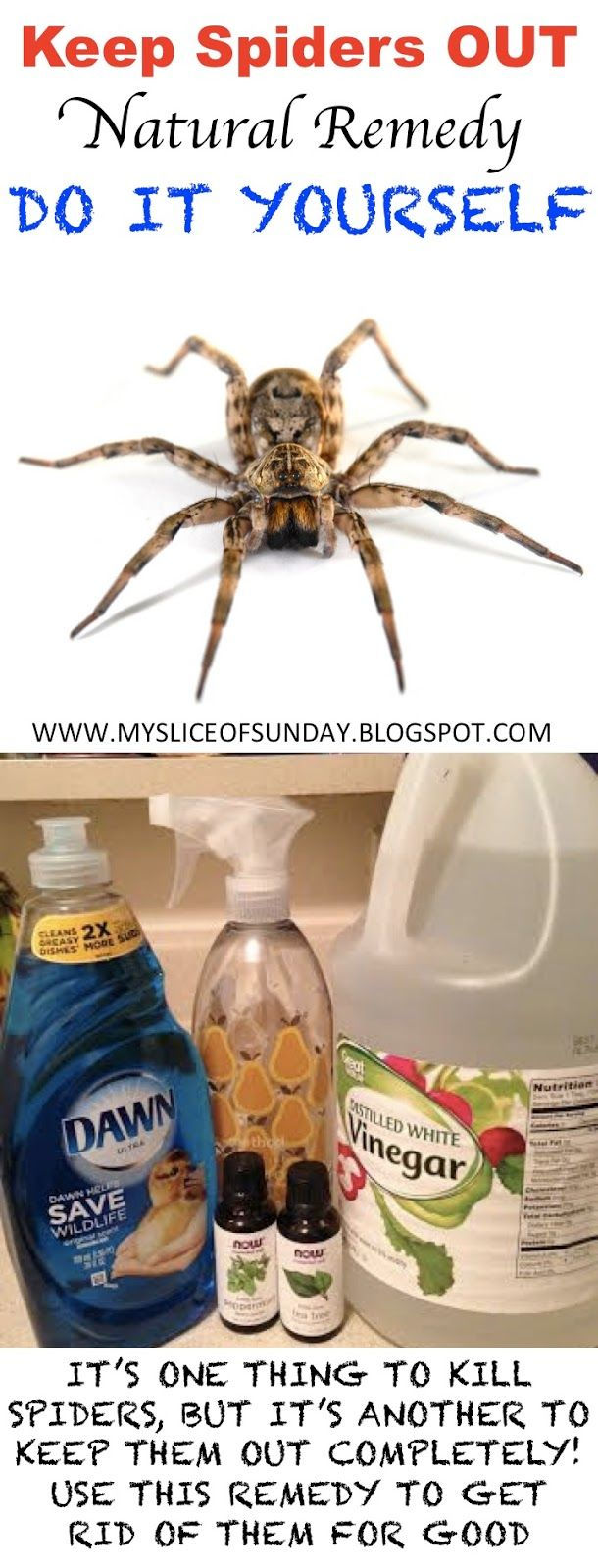 Keep Spiders Away ~ My Slice of Sunday- not only is this a good way to rid your home of spiders but it really works on wasp...i had a ton of nests in my yard...they are nearly all gone after using this spray. You dont really need the vinegar...2 cups of water..1 tsp of dawn detergent...1 tsp of peppermint oil....and they are gonners, make sure to wait until dusk...thats when they are the least likely to sting you and when they are tired and returning home to sleep.