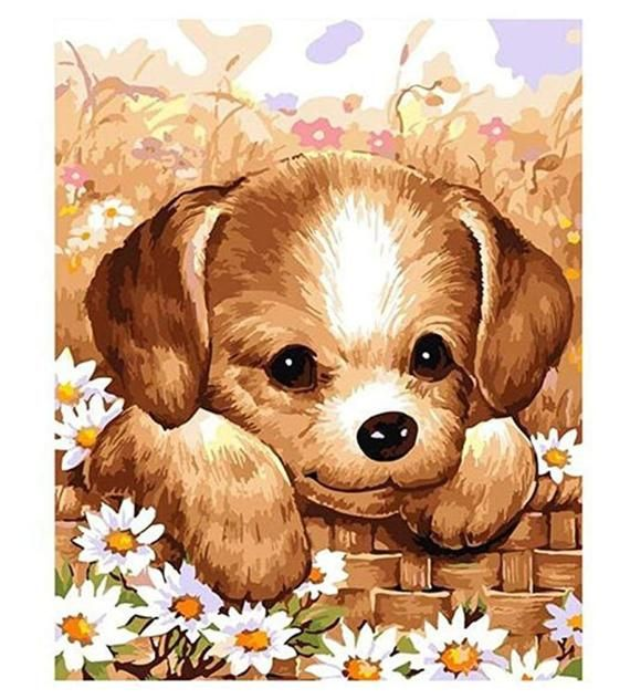 Color Dachshund Dog Animal Canvas Picture Oil DIY Paint Set by Numbers Kits Gift