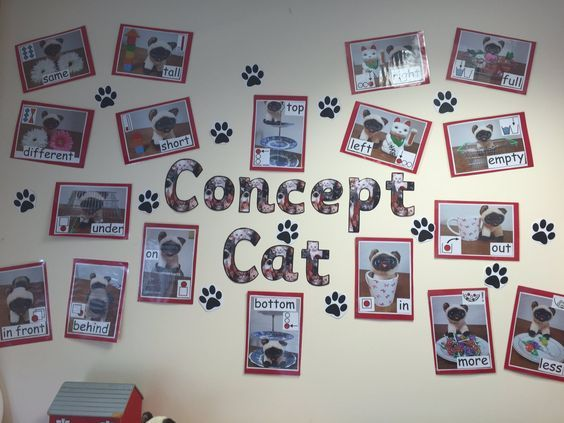 Wonderful Concept Cat display by @SashM90 at @OasisWarndon school. Great images and a really useful way to review early verbal concepts once they have been taught.