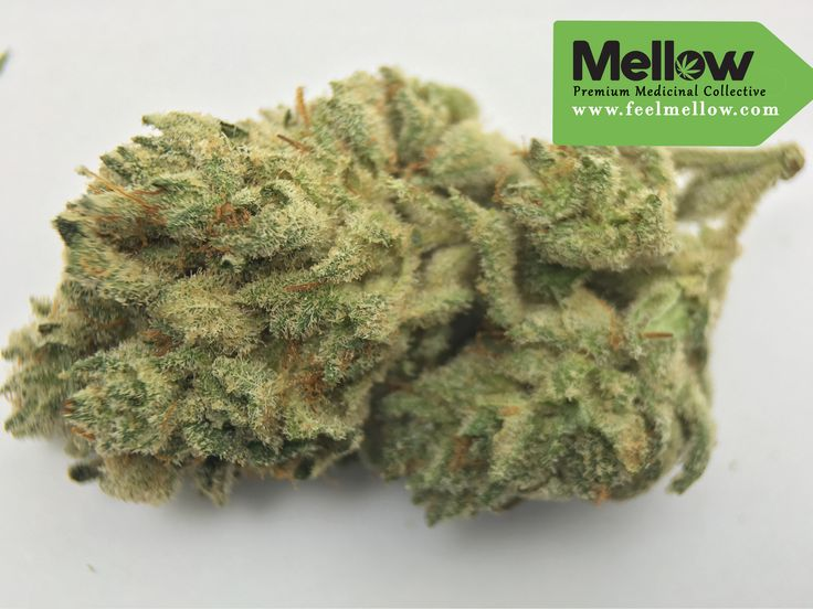 Gorilla Glue is an indica heavy strain, great for treating average ailments like pain, pms or even migraines.