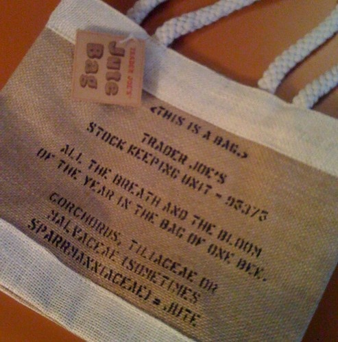How To Make A Book Cover With A Trader Joe S Bag : New trader joe s reusable shopping jute bag rope burlap