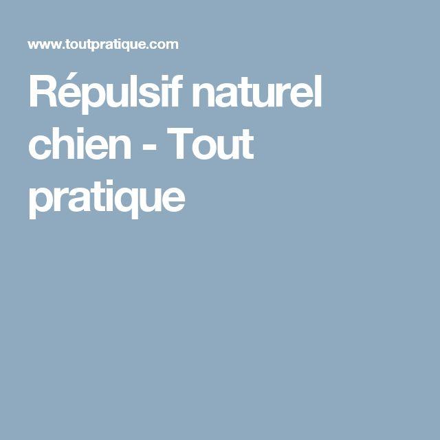 Répulsif naturel chien - Tout pratique