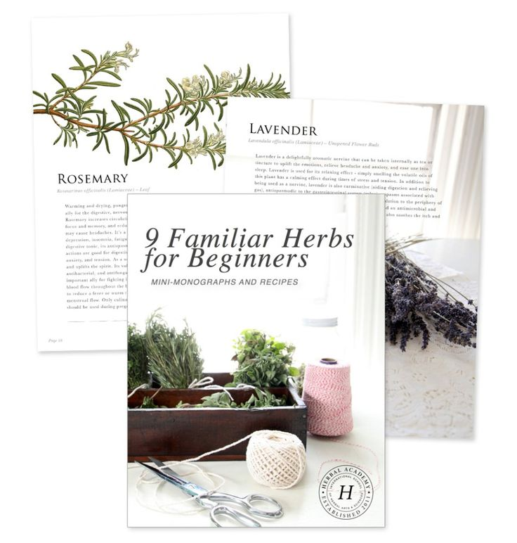 842 best herbal remedies images on pinterest herbal remedies free herb ebook for beginners fandeluxe Ebook collections