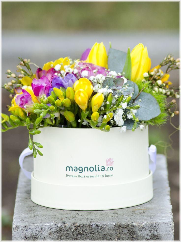 Aranjament floral in cutie eleganta. Aranjamentul contine frezii, lalele si  verdeata asortata. Spring flower arrangement in box. The floral arrangement contains freesias, tulips and greenery.
