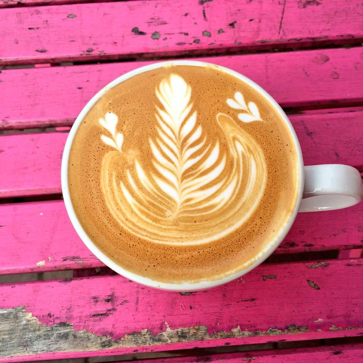 Paul's beautiful looking latte - Rosetta with 2 baby tulips