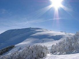 This is Mount Buller, Victoria, Australia. August awaits!