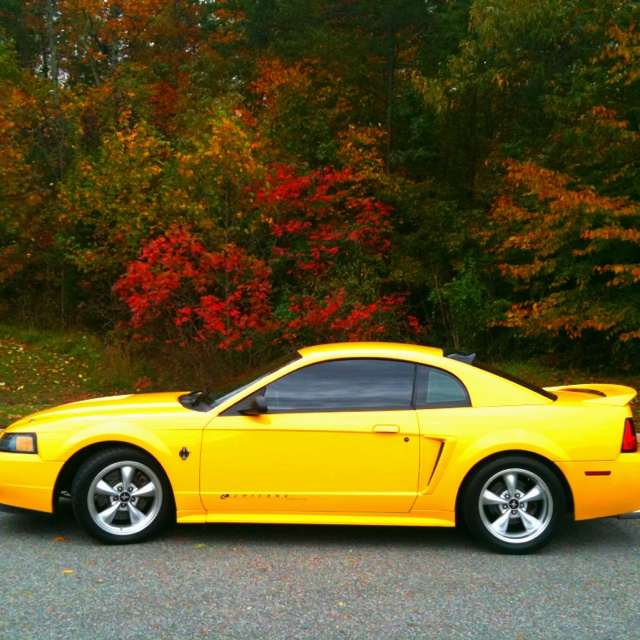1999 Chrome Yellow Mustang GT Supercharged
