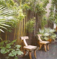 .: Gardens Ideas, Green Wall, Chairs, Outdoor, Gardens Spaces