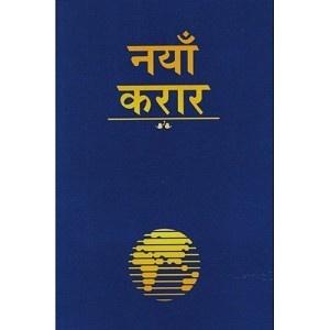 Nepali New Testament-FL-Easy to Read (Nepali Edition)