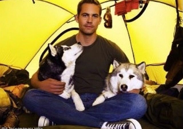 I imagine he loved these dogs after working with them...who wouldn't?