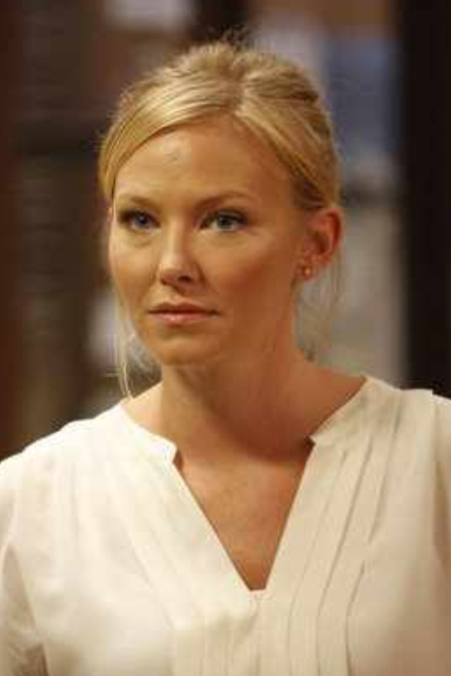 kelli giddish (Diana Henry) All My Children ... (Detective Amanda Rollins) Law & Order SVU