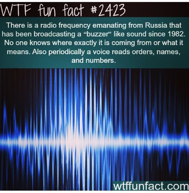 Best Trivia And Life Hacks Images On Pinterest Random Facts - 10 interesting facts about russia