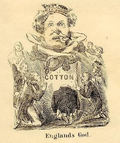 Cotton dissertation