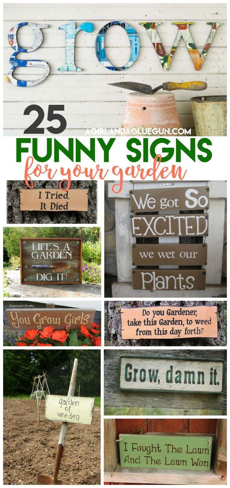 best garden images on pinterest gardening flowers garden and