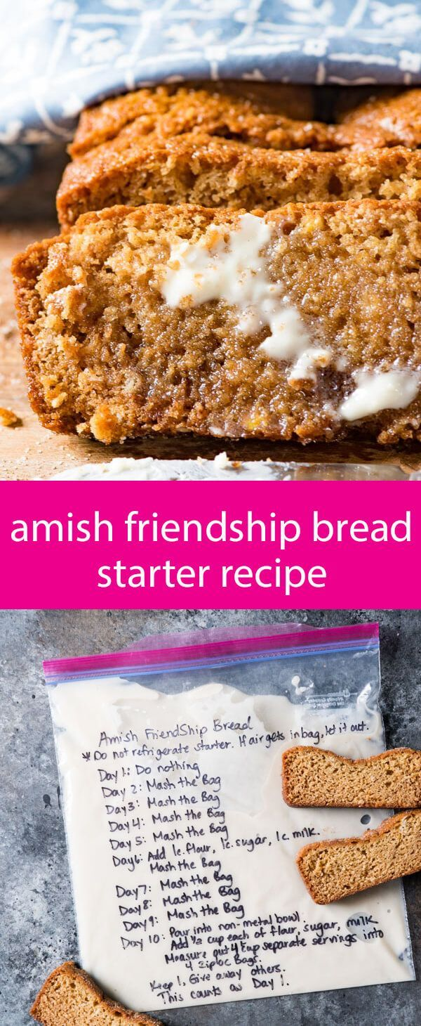 amish friendship bread starter recipe / sweet sourdough recipe / how to make sourdough / amish sourdough / sourdough recipe with sugar via @tastesoflizzyt
