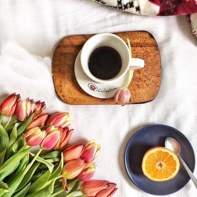 It's time to start living the life you've imagined. Coffee and tulips ❤ . . . . . . .#coffee #tulips #orange #white #wood #morning #goodmorning #dimineata #bunadimineata #cafea #lalele #portocale #trendy #style #lifestyle #blogger #fashion #fashionblog #followme #instadaily #photooftheday #bestoftheday #instafashion #fashionista #goodvibes #instamood #fericire #fructe #fruits