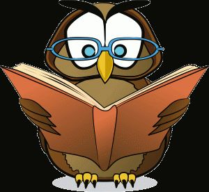reading-owl k-8 reading- nice set of short stories for stations or independent work with formative assessments provided