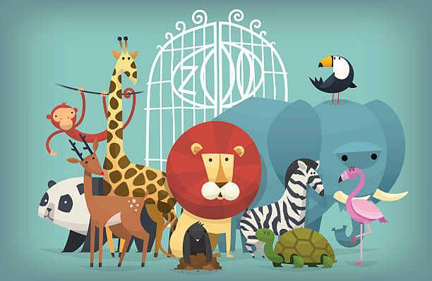 Zoo Illustration Google Search Zoo Art Animal Illustration Zoo Animals
