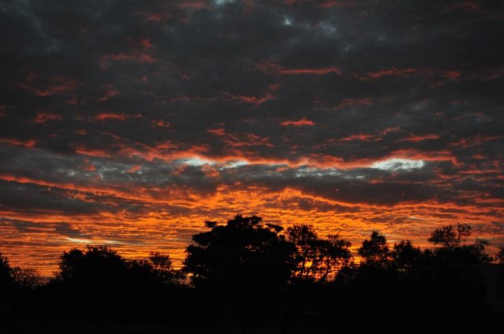 Sunset in Pretoria (Photo: Tracey-Leigh Lawson)