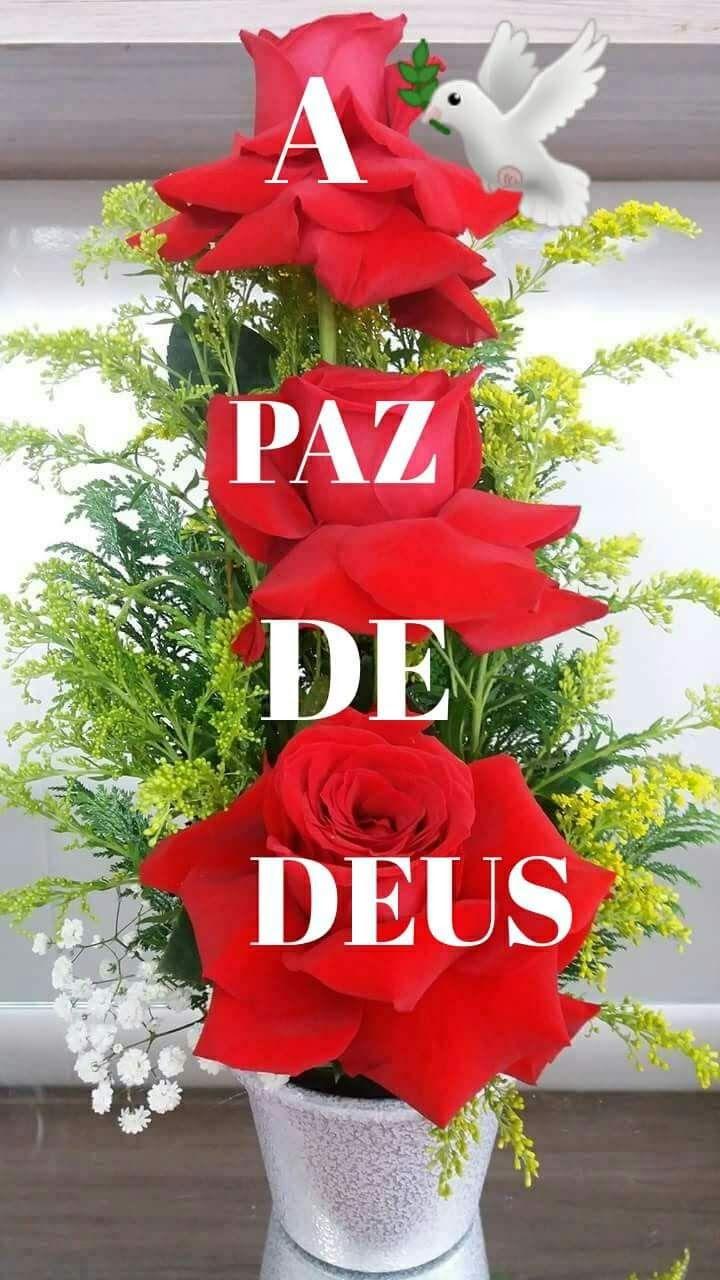 Foto Google Amigos De Verdade Frases Fotos Ccb Mensagem De