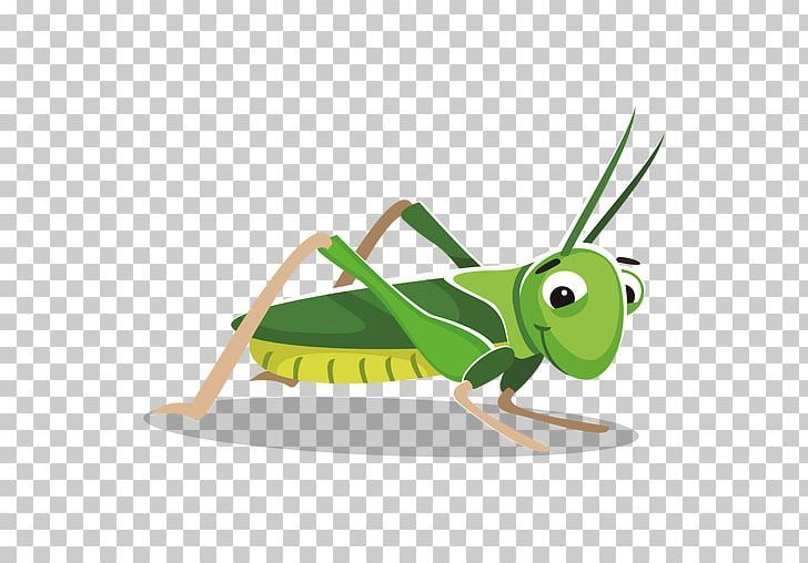 Grasshopper Cartoon Png Animation Arthropod Cartoon Cricket Like Insect Desktop Wallpaper Cartoons Png Cartoon Png