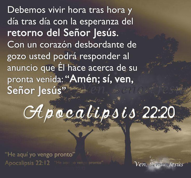 Conocer la doctrina es una cosa; algo muy diferente es vivir hora tras hora y día tras día con la esperanza del retorno del Señor. Si usted espera, todos sus afectos estarán concentrados en Aquel a quien está esperando.