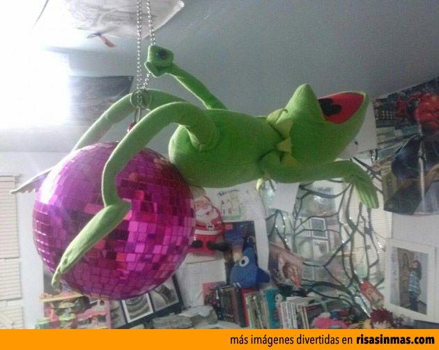 La Rana Gustavo imitando a Miley Cyrus.