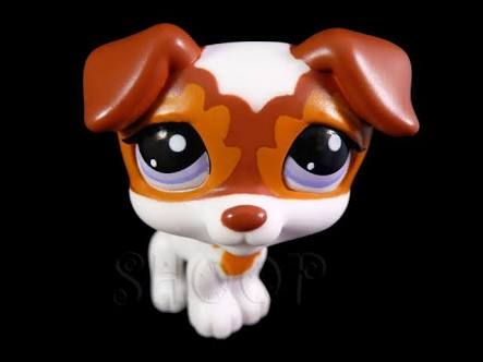 lps - Google Search