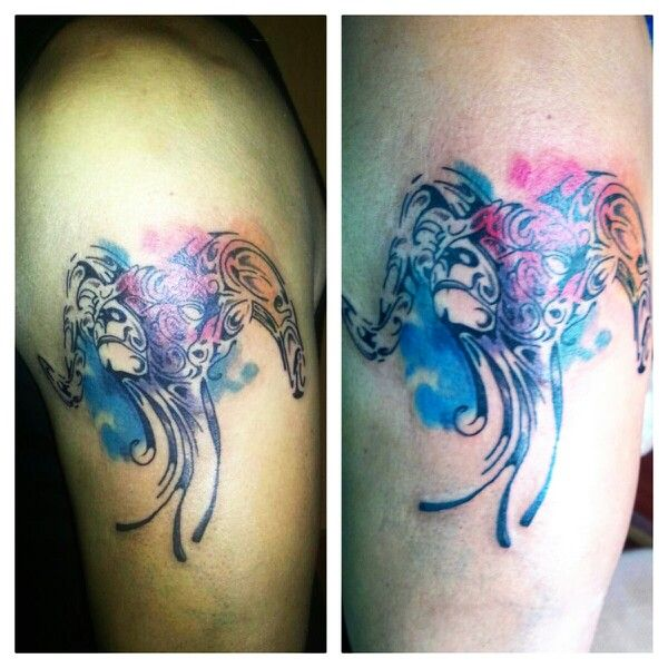 #kanuttoo #tattoo #tatu #tatuaje #ink #inked #signzodiac #zodiac #aries #signoszodiaco #zodiaco #blue #azul #red #rojo #purple #morado #yellow #amarillo #lines #line #linetattoo #linea #lineas #blackandwhite #blancoynegro #shadow #sombra #cabrio #pets #mascotas #pet #mascota #paintbrush #acuarela #watercolor #pintura #arm #brazo #shoulder #hombro #ambient #ambiente #nature #naturaleza #cute #beautiful #bonito #paintbrush #colorful #people #gente