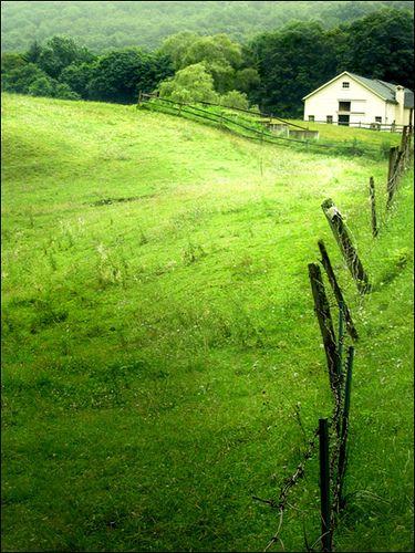 Green   in CT (USA).  Beautiful. #scenesofnewengland #soCT, #scenesofConnecticut