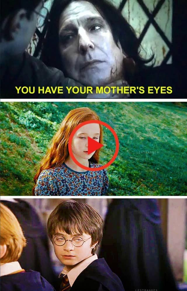 17 Harry Potter Memes Die So Dumm Sie Sind Gross Funny Pictures Harry Potter Funny Gif