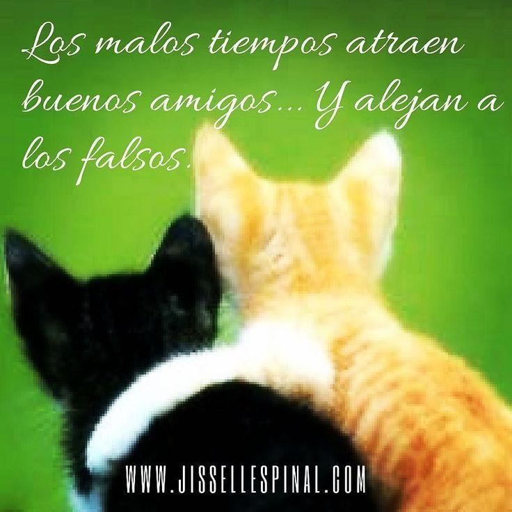 Los malos tiempos atraen buenos amigos... Y alejan a los falsos. #almaplastía #coachinglife #coachdevida #jissellespinal