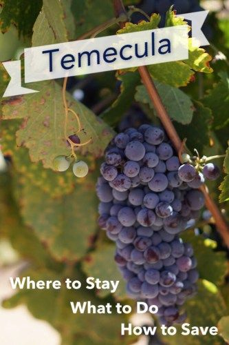 Planning a Trip to Temecula Wine Country, here are tips on where to stay, what to do, and how to save!