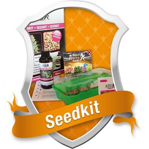 Les Spores Colombiennes sont disponibles pour les producteurs expérimentés qui s'intéressentà la procédure de sélection.