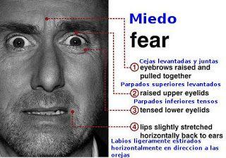miedo.jpg (320×224)